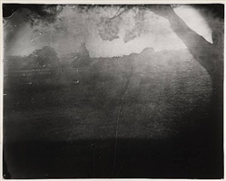 untitled [antietam # 7] by sally mann